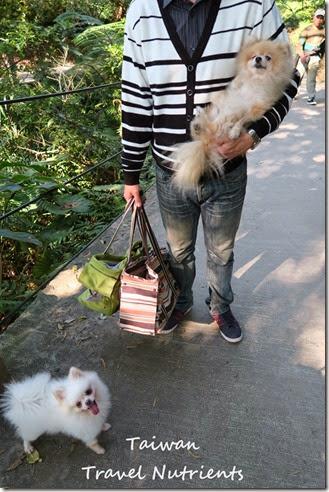 基隆情人湖 環湖步道 (24)