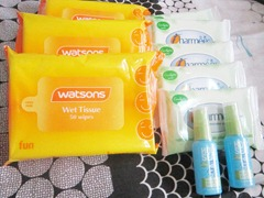 watsons wet tissue, charmee, holy seat, bitsandtreats