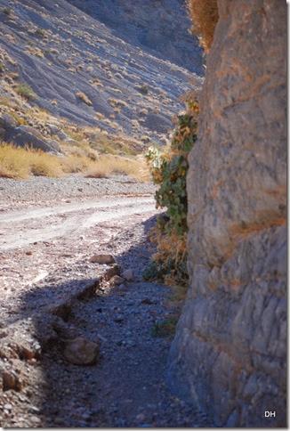 11-08-13 A DV 4x4 Titus Canyon Road (318)