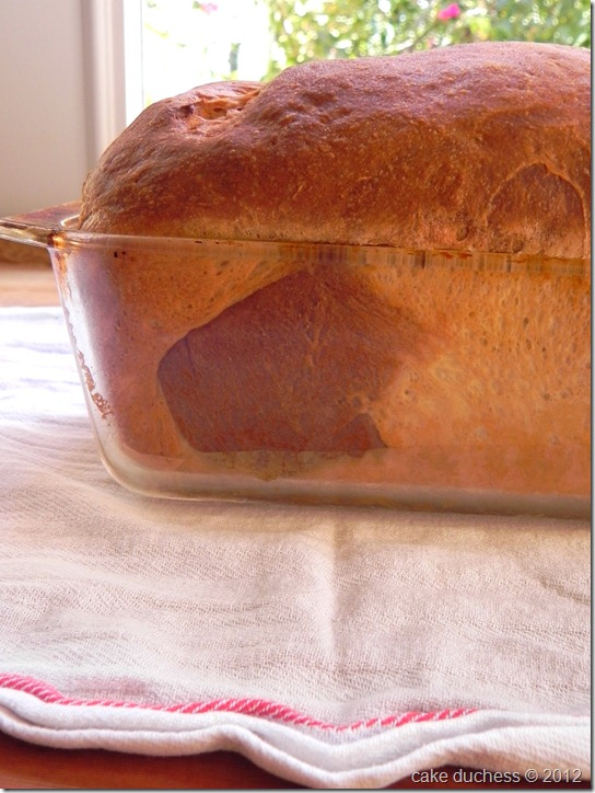 chocolate-marbled-brioche-loaf-9