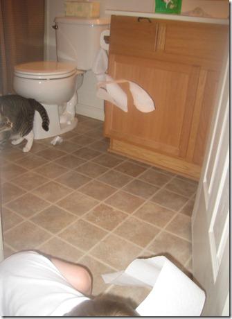 10 16 11 - Toilet Paper Caper (2)