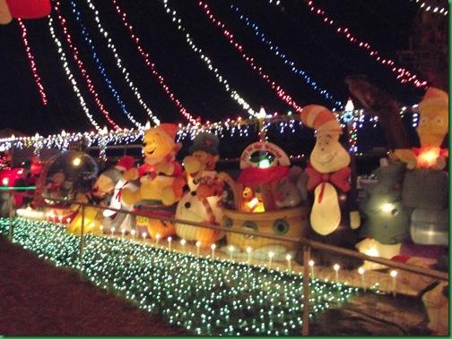 Holiday Lights 036
