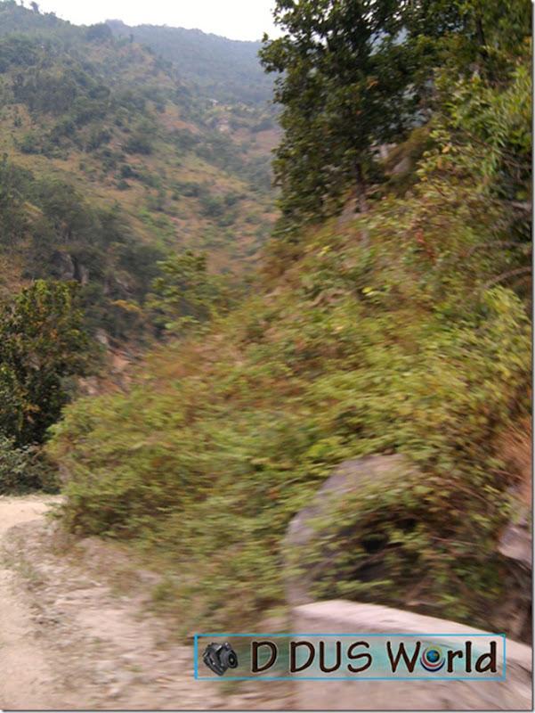 Pathivara yatra (27)
