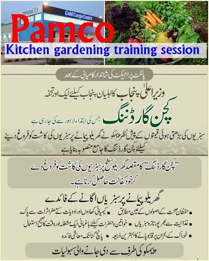 pamco holds kitchen gardening training session agriculture rh agrinfobank blogspot com Gardening Group Dairy Farming in Pakistan in Urdu