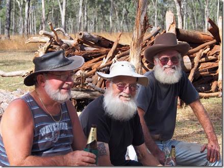 Three Beardies