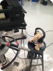 Teddy_behind_the_camera
