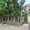 2014_march_Loboc_school_parish-016.jpg