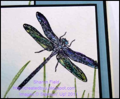 2.coloring.the.dragonfly_sharon_Field