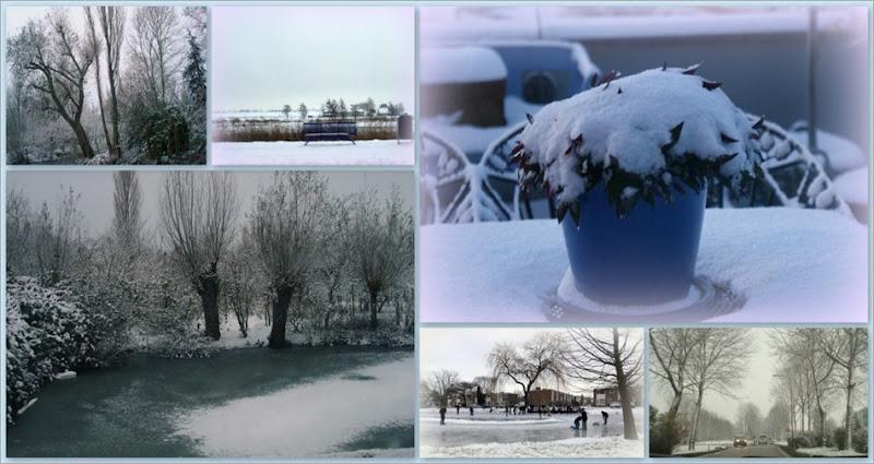 1-21-12-2009, veel sneeuw3