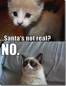 santas not real