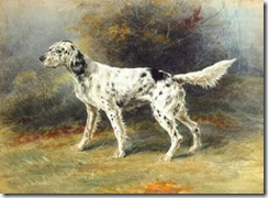 an english setter in a landscape