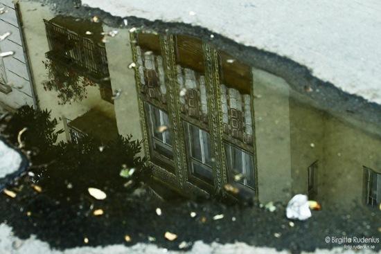 window_20110916_watery