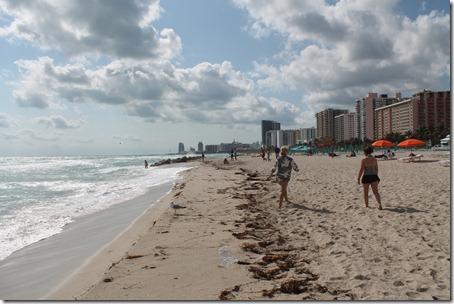Miami 151