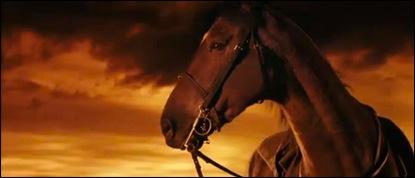 War Horse - 3