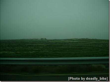 """Ride Through The Desert""; D.B.; Los Monegros, 12/06"