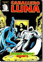 P00012 - Caballero Luna #2
