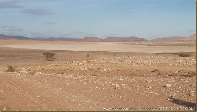 Desierto-353