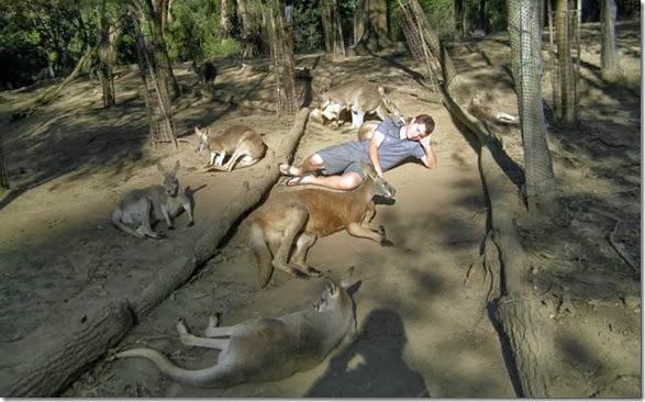 meanwhile-australia-41