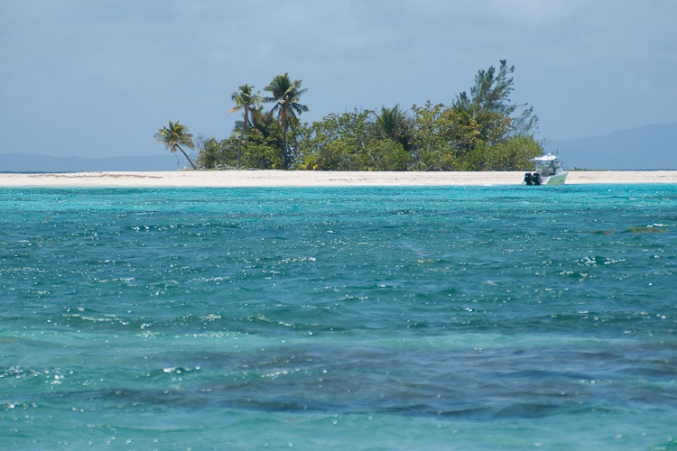 Palomino Island blog-10