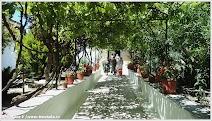 Корфу. Греция. Фото Широковой В.
