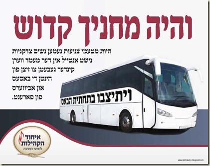 kinus buses - Copy