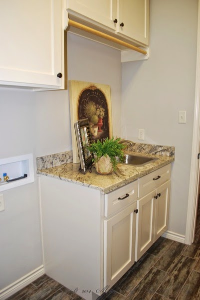 Laundry room sink and clothes hanger