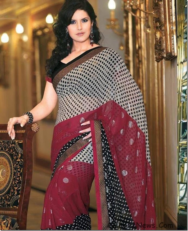 zarine-khan-saree-14