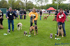20100513-Bullmastiff-Clubmatch_30853.jpg