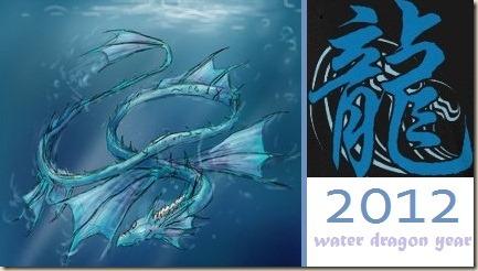 water dragon year hanifa binder
