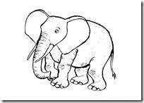 elefante colorear (4)