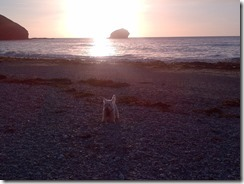 Cornwall-20130516-00538