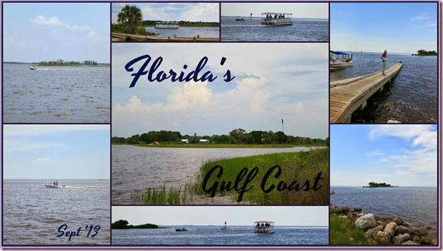 IPgulfcoastcollageCR