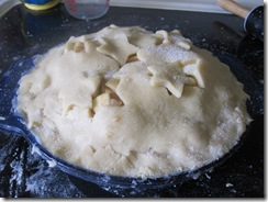 Apple_Pie_07-04-2011 (1)