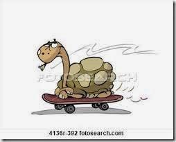 humor tortugas (41)