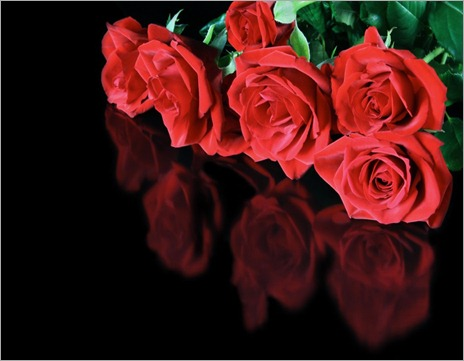 Red_roses_reflected_on_a_black_surface