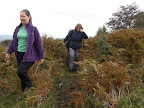 Trudging through the undergrowth at the start of the walk up to Pen-y-Fan