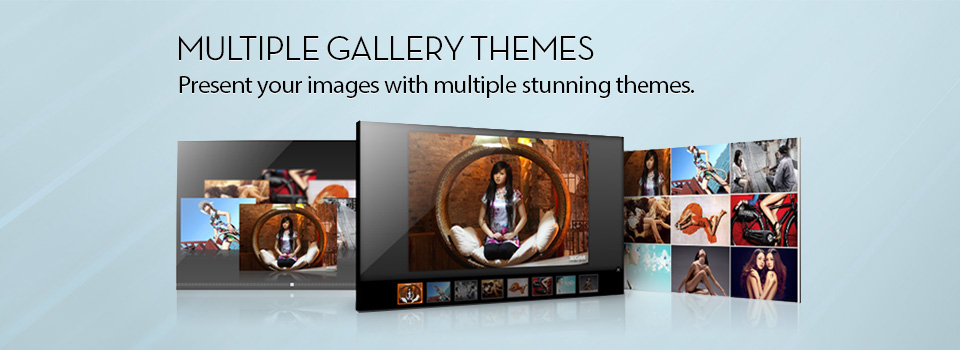 Multiple Gallery Themes