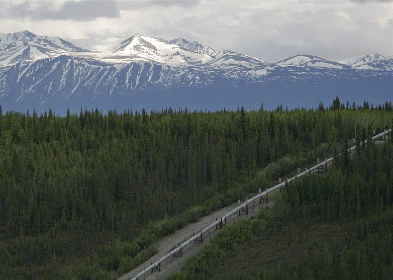 trans-alaska-pipeline-7