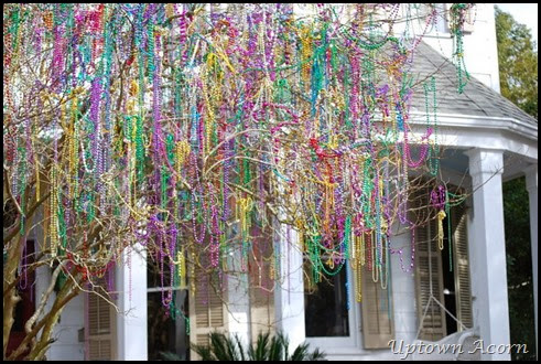 bead tree8