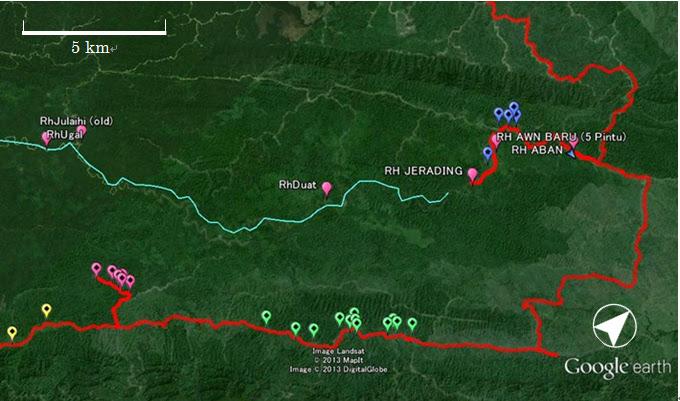 ルマ・ウガール~ルマ・アワン付近のランカオの分布 / Scattered langkau near Rh. Ugan and Rh. Awan