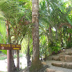 seychelles1_20070412_1203339935.jpg