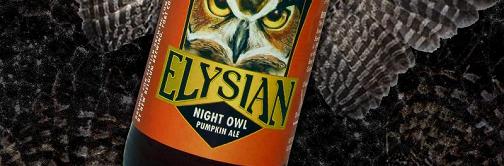 image courtesy of Elysian Brewing