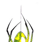 yellow-green-spiders-12.jpg