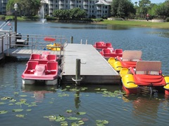 Florida Marriott Cypress Harbour paddle boats
