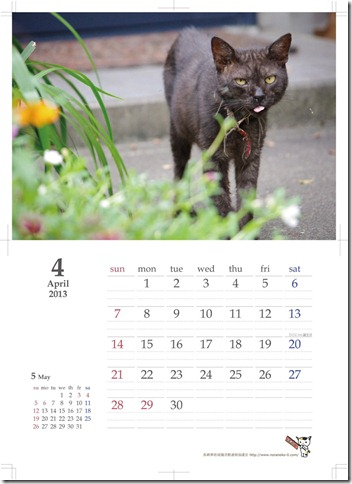 2012-1013_commucat_april