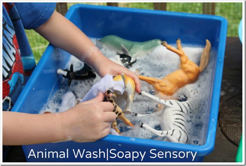 Animal Wash - Soapy Sensory