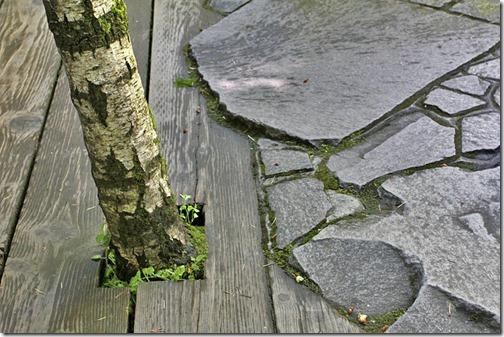 100726_Portland_Japanese_Garden_039