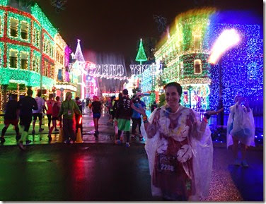 Osborne Family Spectacle of Dancing Lights (2)