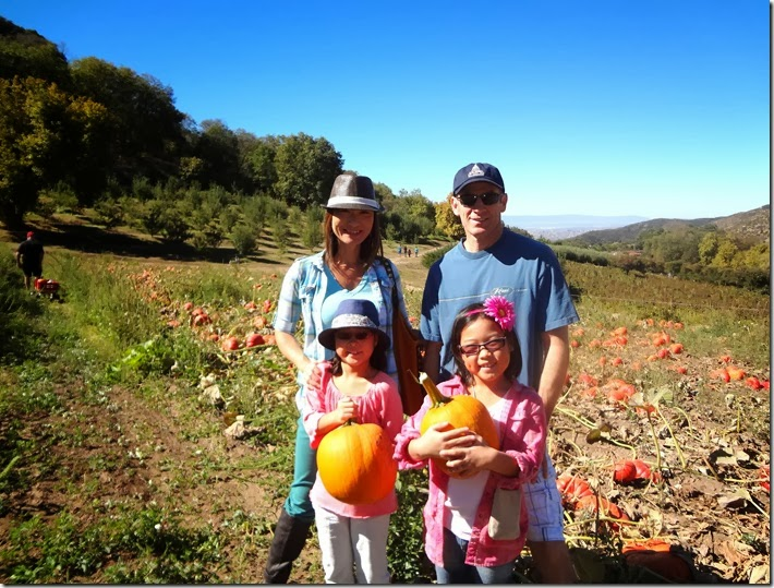 Pumpkin Patch 023