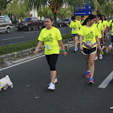 Pet Express Doggie Run 2012 Philippines. Jpg (93).JPG